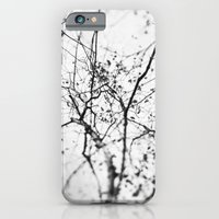 Looking Up . V iPhone 6 Slim Case