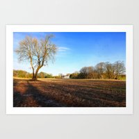 The Old Country House II Art Print
