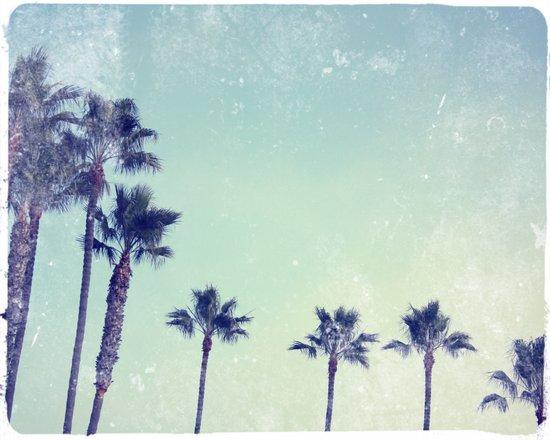 Palm prix Art Print