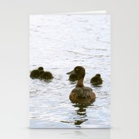 Ducklings In The Water Stationery Cards