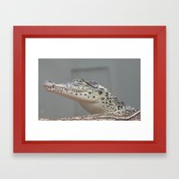 Oh My Framed Art Print