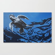 Baby Blue Canvas Print