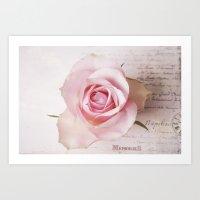 Memories Of A Rose  Art Print