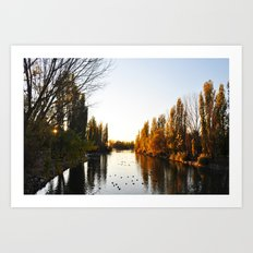 Pond at Afternoon Art Print