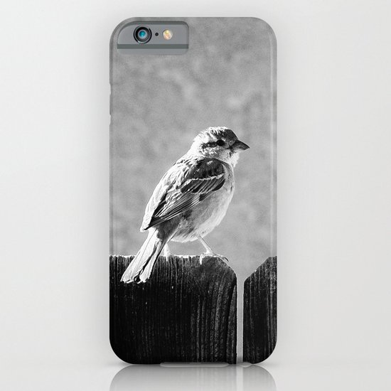 Sparrow BW iPhone & iPod Case