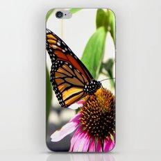 Nature's Beauty iPhone & iPod Skin