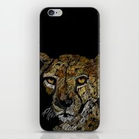 Cheetah  iPhone & iPod Skin