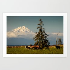 Horses and Mount Redoubt, Enroute to Homer, Alaska Art Print