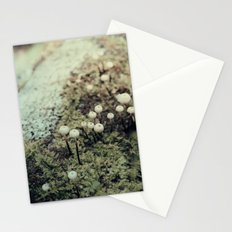 Toadstool Forest Stationery Cards