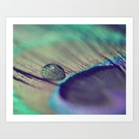 A Feather Art Print