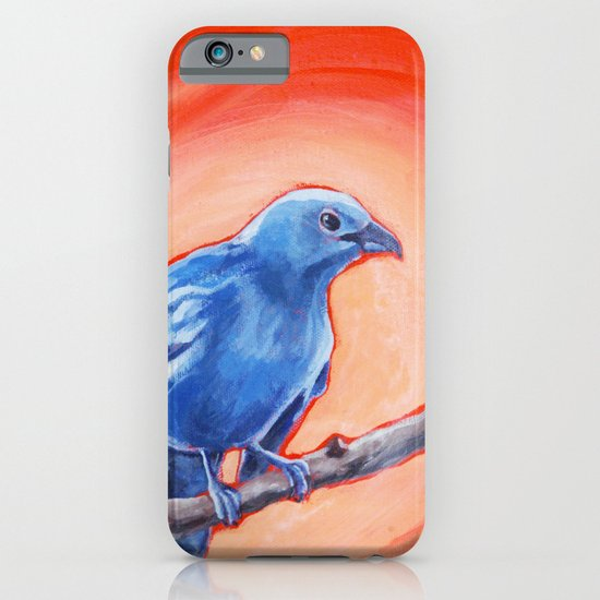 Blue Grey Tanager iPhone & iPod Case