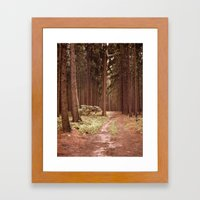 A Path in the Woods Framed Art Print