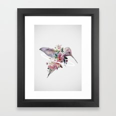Kolibri Framed Art Print