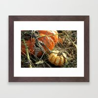 Around the Pumpkin Patch Framed Art Print