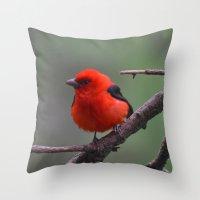 Scarlet Tanager - A Nature Art Print Throw Pillow