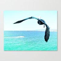 Pelican and Jetski Canvas Print