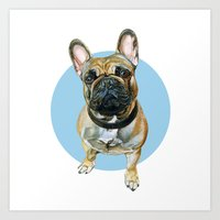 French Bulldog blue spot. Art Print