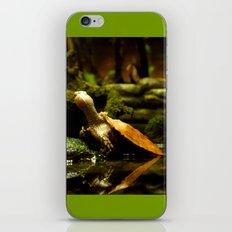 Mr. Turtle Workin' On His Tan iPhone & iPod Skin