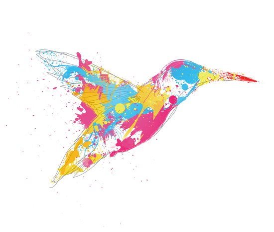 Bird of colour Art Print