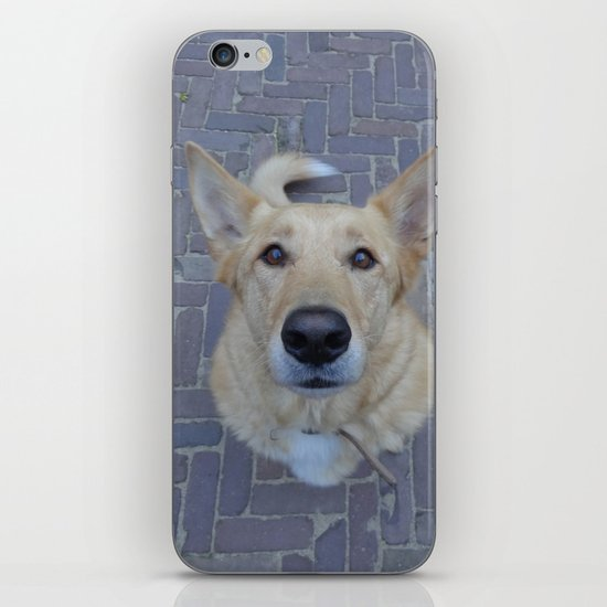 Treat? iPhone & iPod Skin