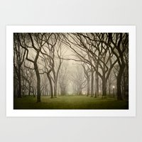 Enchanted Art Print