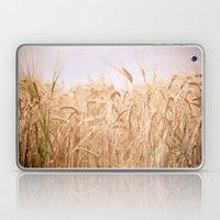 Golden Summer Laptop & iPad Skin