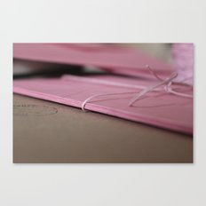 Pink Envelopes Canvas Print