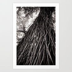 Roots of the Earth Art Print