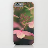 Pink Hydrangea iPhone 6 Slim Case