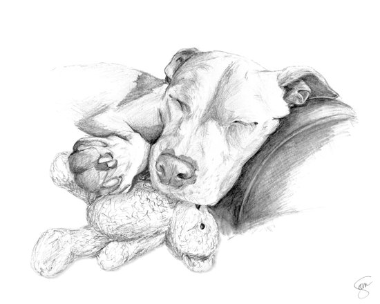 Let Sleeping Dogs Lie :: Grayscale Art Print