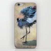 The Dancing Crane iPhone & iPod Skin