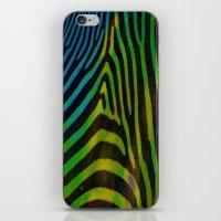 Zebra in Color iPhone & iPod Skin