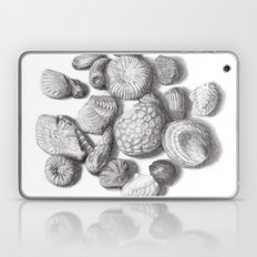 Fossils Laptop & iPad Skin
