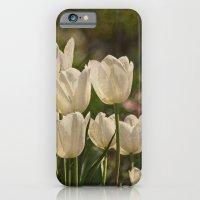 Last Year at the Arboretum iPhone 6 Slim Case