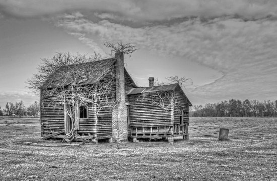 Overgrown Old House in B&W Art Print