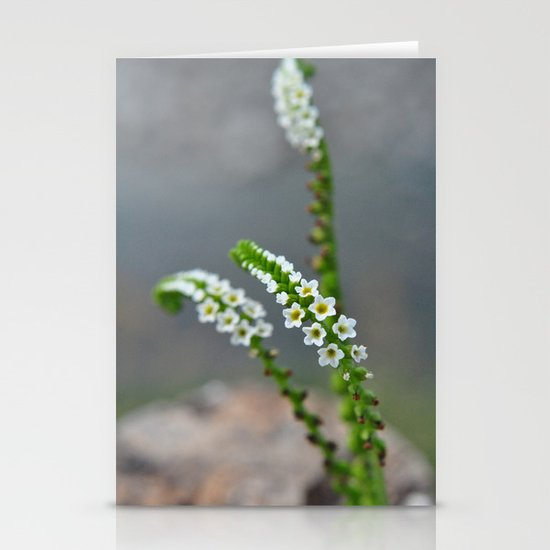pretty little things Stationery Card