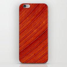 orange leaf II iPhone & iPod Skin