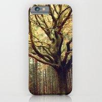iPhone & iPod Case featuring Hêtre de Ponthus 02 - Legendary Trees of Brocéliande by Marc Loret
