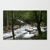 Greenbrier Rapid Canvas Print