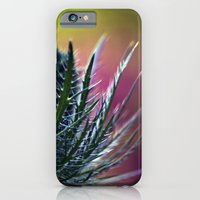 Colorful beauty iPhone 6 Slim Case