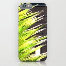 Organic iPhone 6 Slim Case