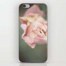 Fragile Bloom iPhone & iPod Skin