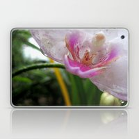 Orchid Mornings Laptop & iPad Skin