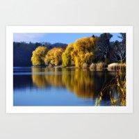 November Pond  Art Print