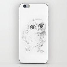 Sweet Little Owl iPhone & iPod Skin