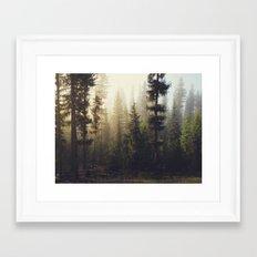 Sunrise Forest Framed Art Print