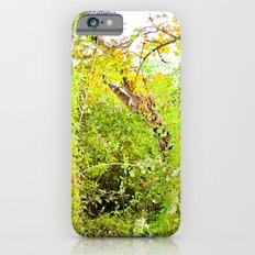 Colorful Confusion iPhone 6s Slim Case