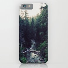 Oregon x Rainier Creek iPhone 6 Slim Case