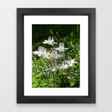 The Doves (Columbine) Framed Art Print