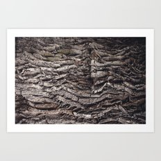 Oak tree trunk Art Print